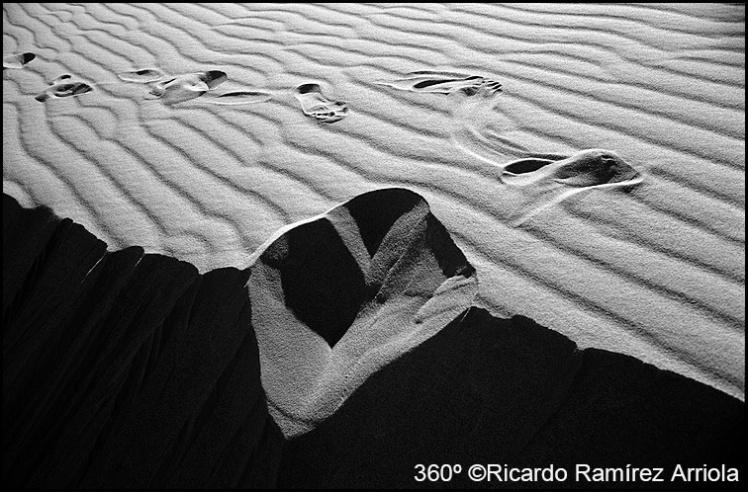 036RicardoRamirezArriola